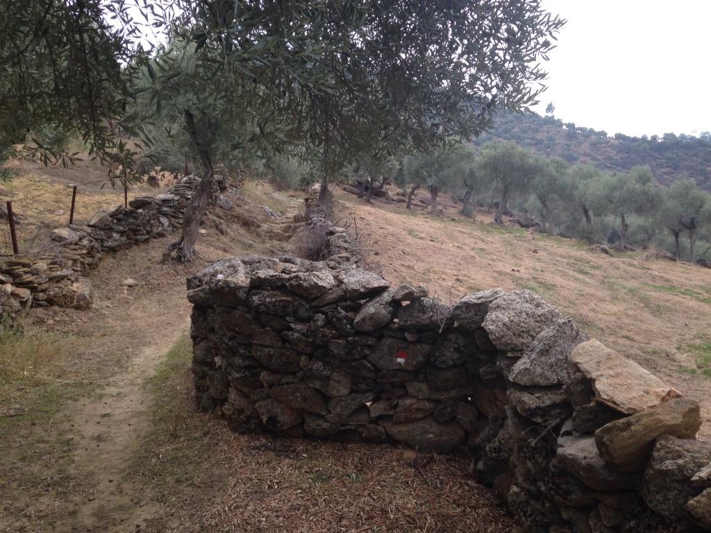 Zaman zaman yaşlı taş duvarlar da var.