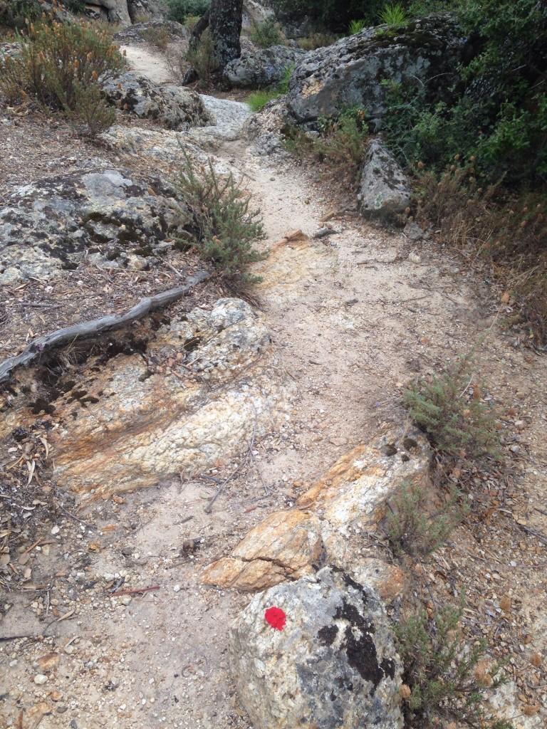 Kırmızı noktalar Kapıkırı'ndaki pansiyoncular tarafından eklenmiş.